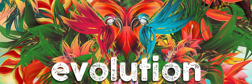 Spotlight - Evolution