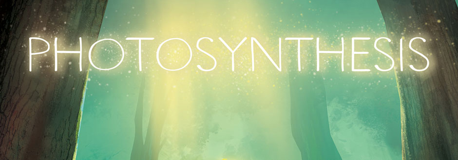 Photosynthesis Board Game Preview