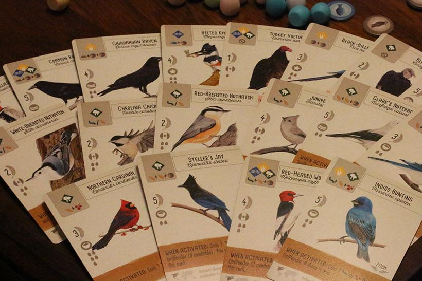 Wingspan Preview - Unique Bird Cards