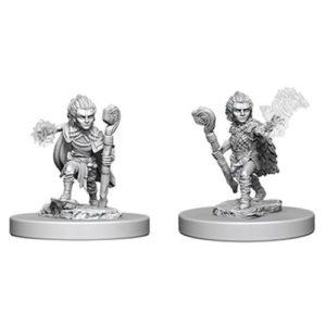 Pathfinder RPG: Deep Cuts Unpainted Miniatures: Gnome Male Druid (Wave 5)