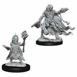 Pathfinder Deep Cuts Unpainted Miniatures (W2) - Evil Wizards