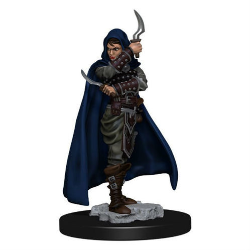 Pathfinder Battles Premium Painted Figure: Human Rogue Female (Wave 1)
