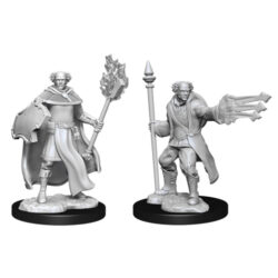 D&D Nolzur's Marvelous Unpainted Miniatures (Wave 13): Multiclass Cleric + Wizard Male