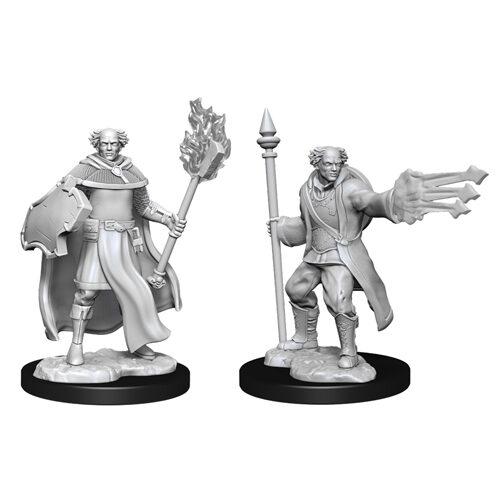 D&D Nolzur's Marvelous Unpainted Miniatures (Wave 13): Multiclass Cleric + Wizard Male
