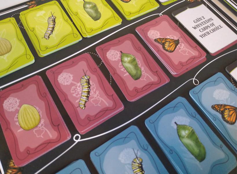 Mariposas Cards