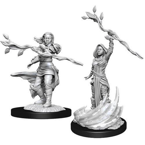 D&D Nolzur's Marvelous Unpainted Miniatures (Wave 14): Human Druid Female