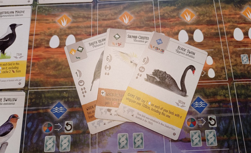 Wingspan oceania cards