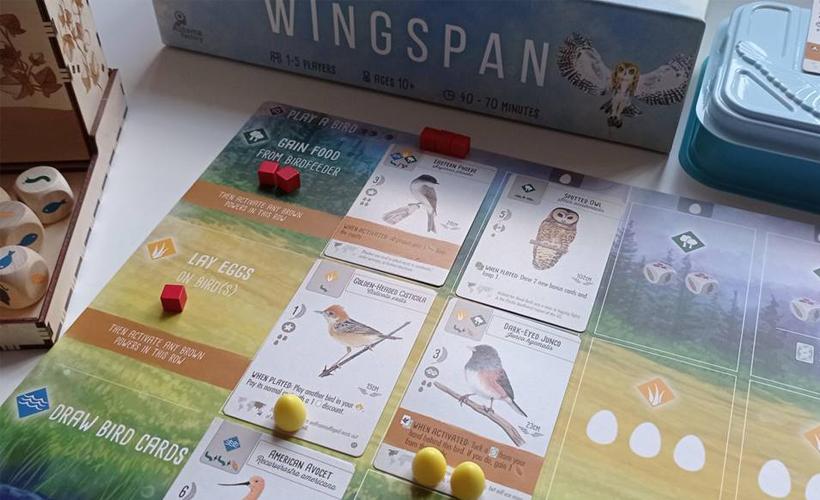 wingspan shot