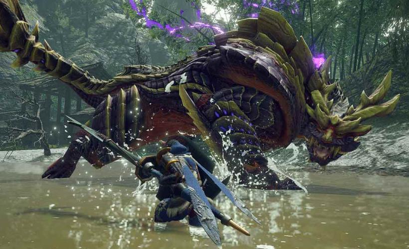 monster hunter rise lake combat