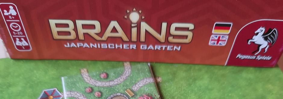 brains japanese garden puzzle box