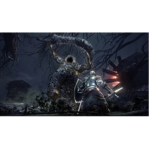 Dark Souls 3: The Fire Fades Edition (Game Of The Year) - PS4 - Gameplay Shot 2