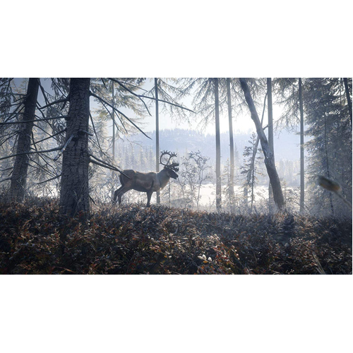 The Hunter Call of the Wild 2019 Edition - PS4 - Gameplay Shot 1