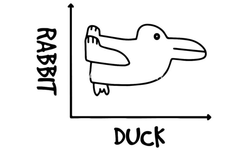 Duck-Rabbit Graph